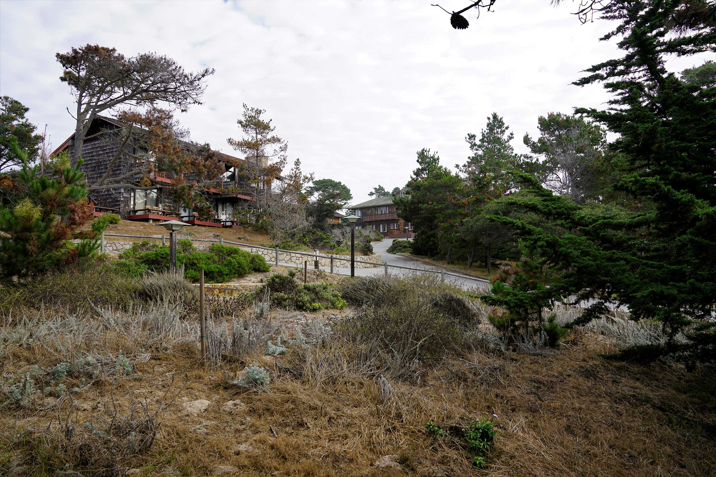 View of the Asilomar Conference Grounds