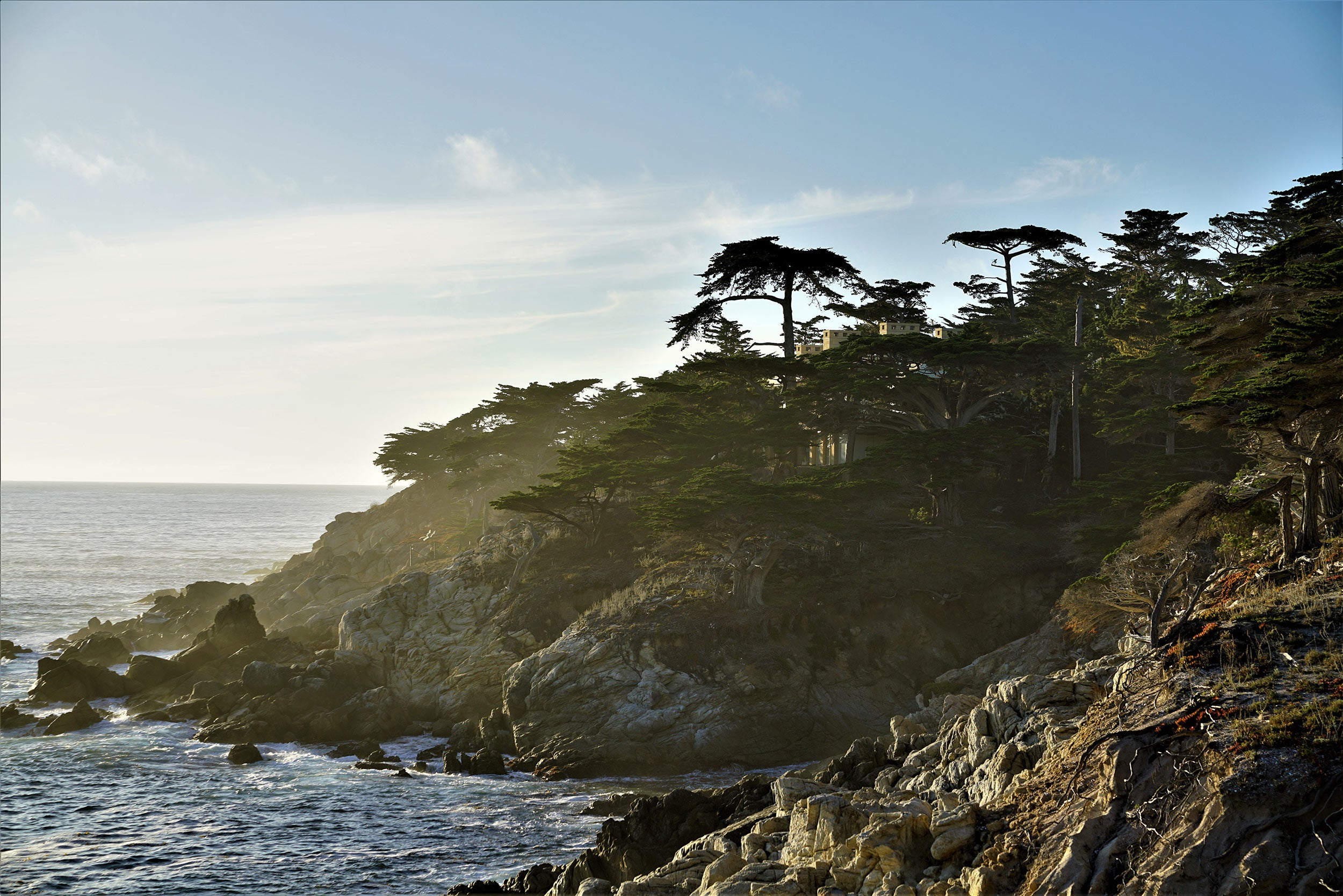 View along the 17 mile drive